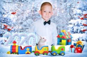 Зимняя и новогодняя фотосъемка в детском саду Год Крысы (Мыши) 2020