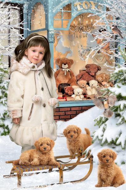 зимний детский коллаж - магазин игрушек