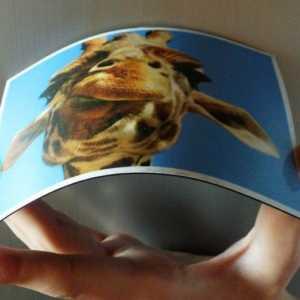 виниловый магнит с фото купить в Коломне на холодильник